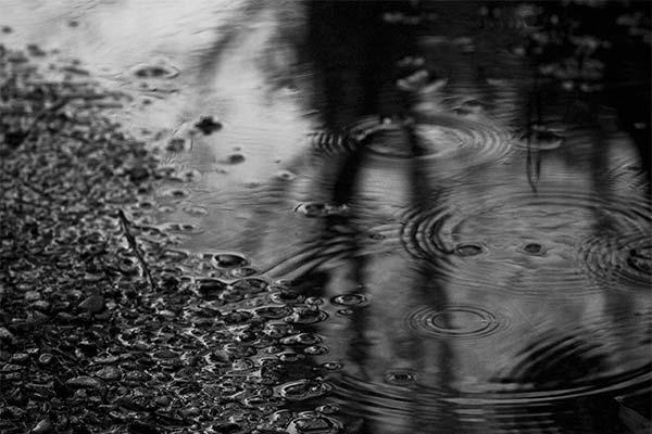Черный дождь