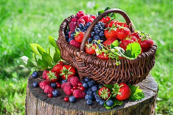 Сонник корзина с ягодами