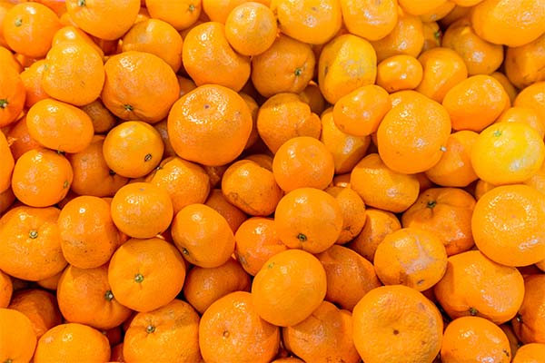 Сонник много мандаринов