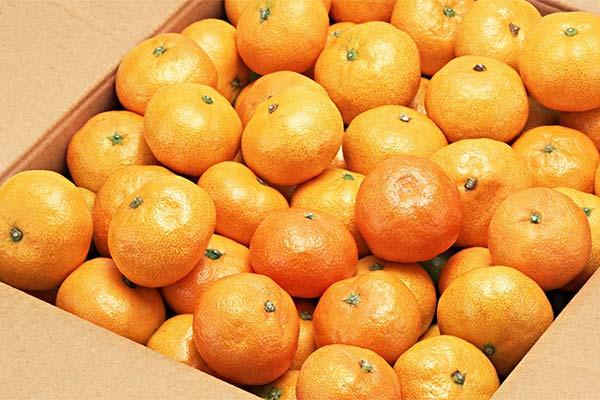 Сонник покупать мандарины