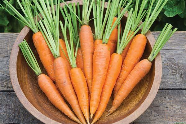Сонник покупать морковь