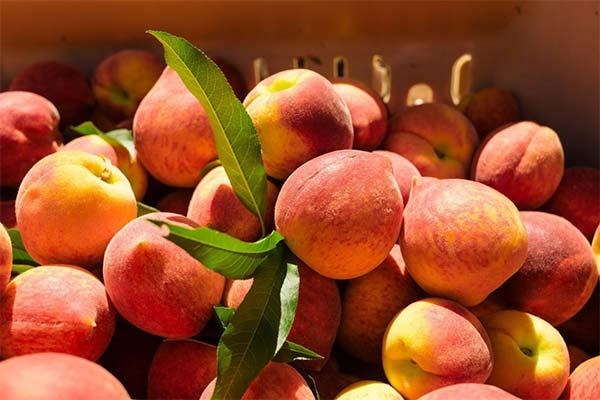 Сонник покупать персики
