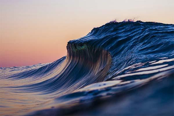 Сонник волна