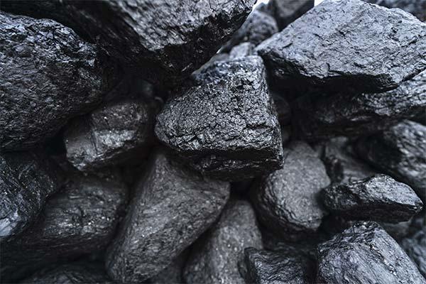Сонник уголь