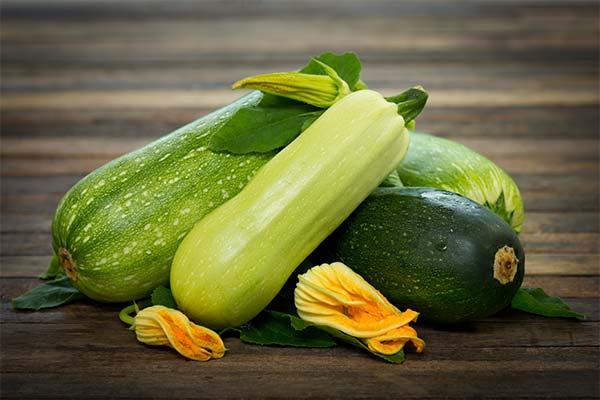 Сонник зеленые свежие кабачки